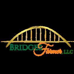 Bridges-Farmer, LLC Attorneys at Law