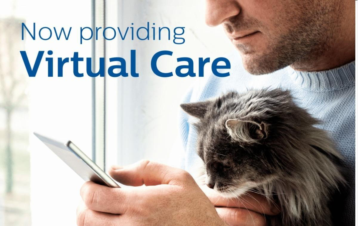 mycityvets virtual care man with cat, looking at smartphone