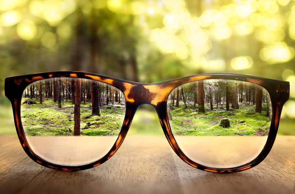 A pair of prescription eye glasses looking at a forest- Knowing What Are The Benefits Of Wearing Eyeglasses In Pensacola - Fifty Dollar Eye Guy 5328 N Davis Hwy Pensacola, FL 32503 (850) 434-6387
