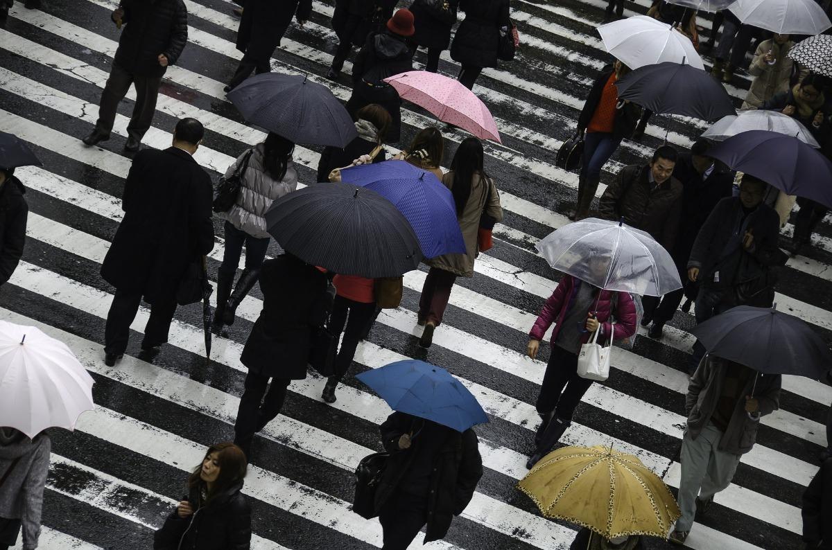 A busy crosswalk