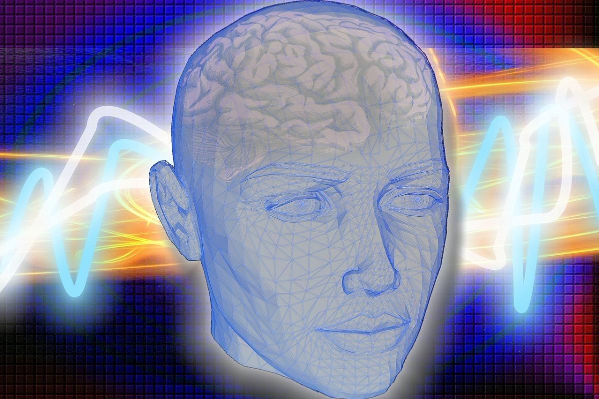 A graphic translucent head showinng the brain