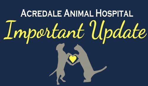 24 hour emergency veterinary virginia beach chesapeake