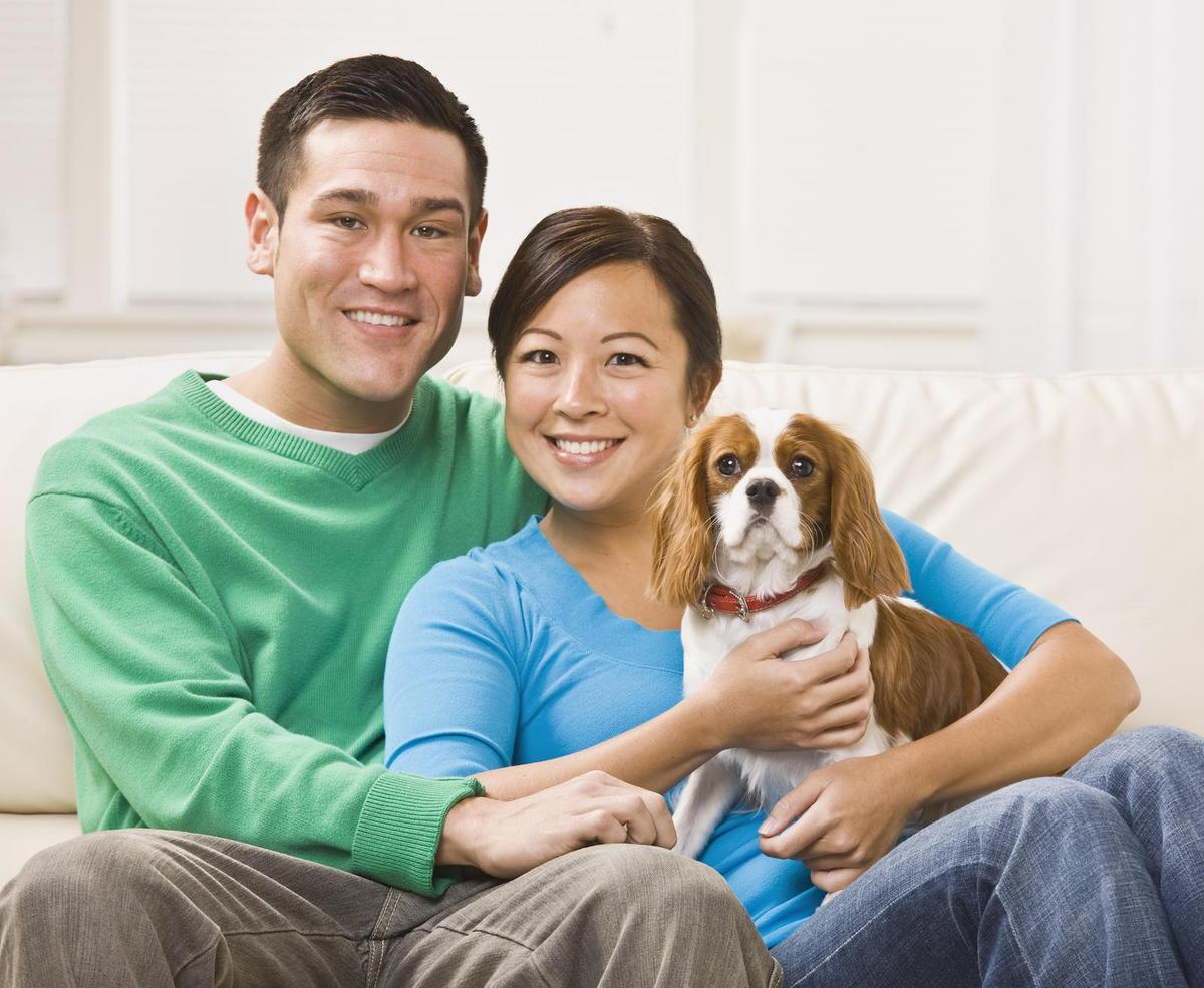 pet cancer diagnosis in Richmond, TX