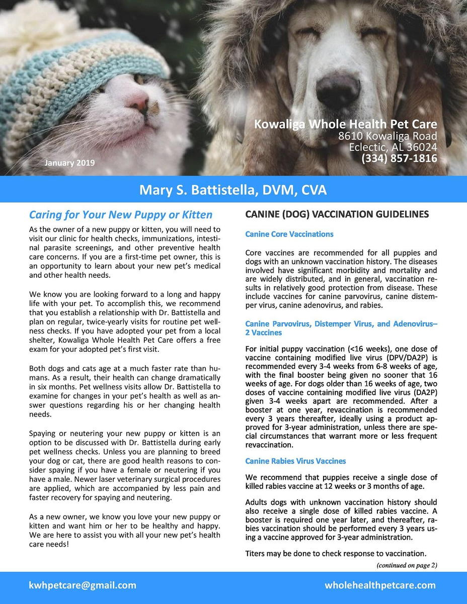Jan._2019_Newsletter-page-0.jpg