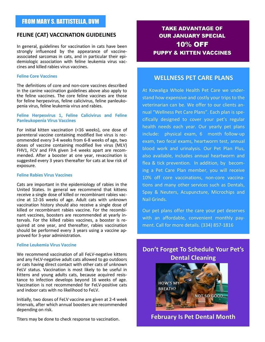 Jan._2019_Newsletter-page-1.jpg