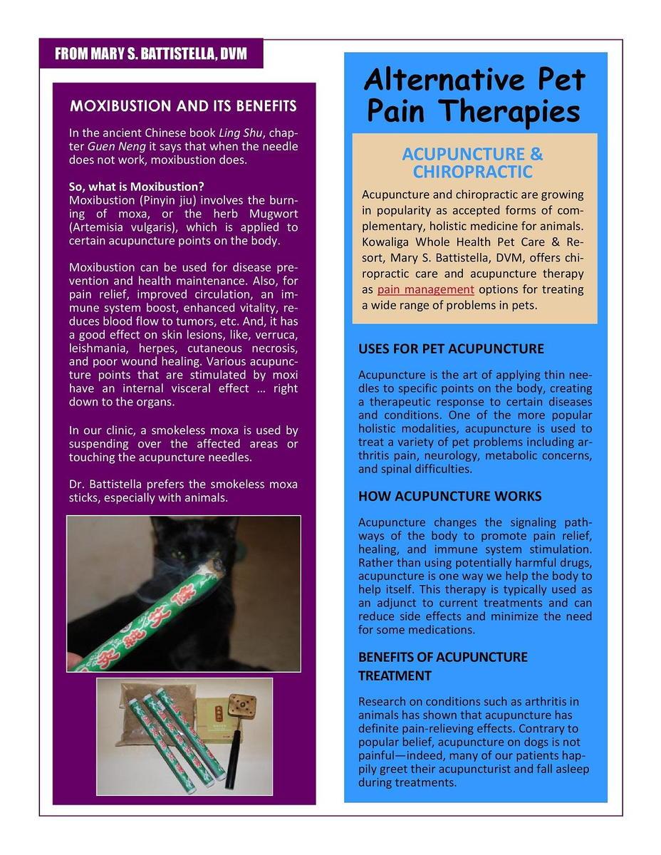 Jan._2019_Newsletter-page-3.jpg