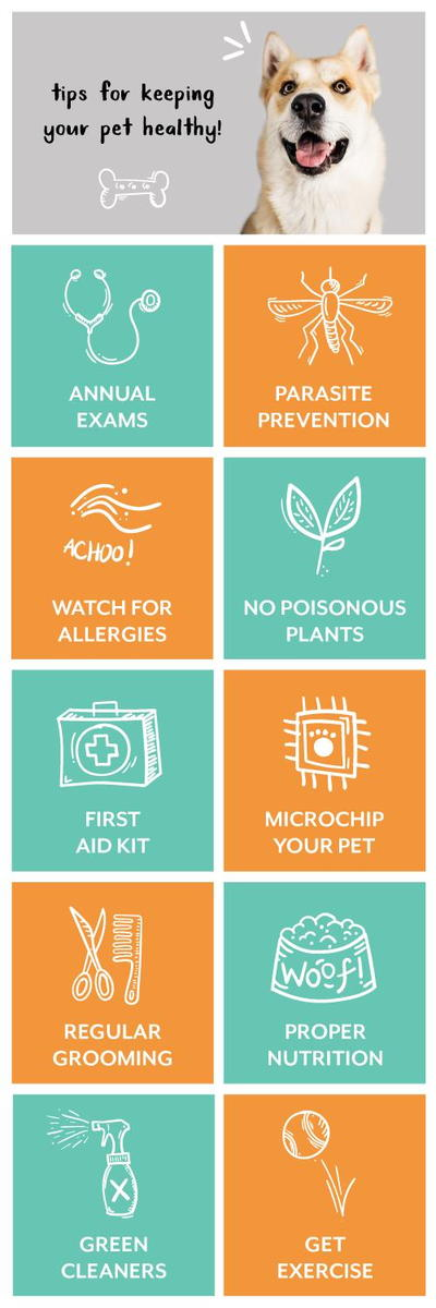 Tips For Keeping Your Pet Healthy Infographic