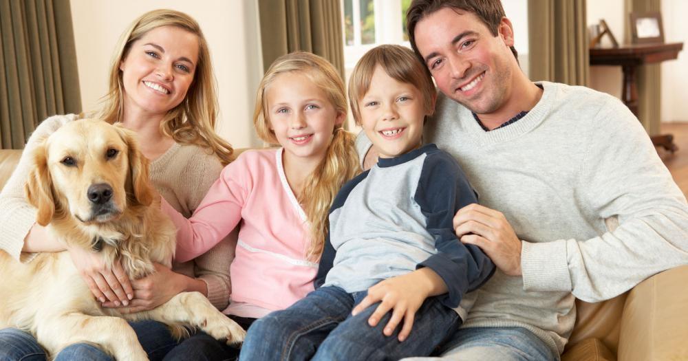 Golden retriever and family, Pet care, Reisterstown Veterinarian