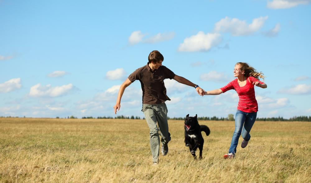 Couple running with their dog through a field.