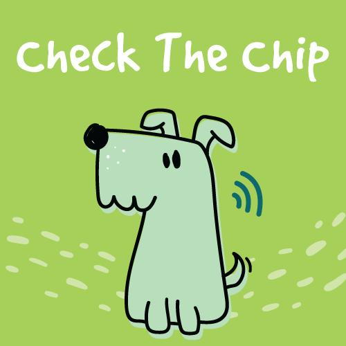 Check The Chip: Get Your Pet Microchipped at St. Francis Animal Hospital