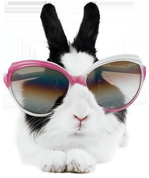 External Parasites in Rabbits