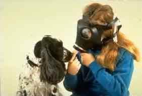 Halitosis bad breathe pet dentist veterinarian in langley